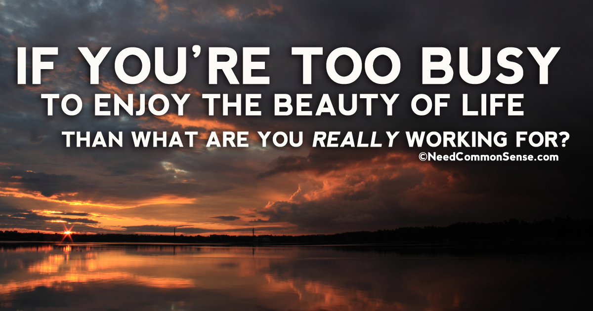 If You're Too Busy To Enjoy the Beauty of life Than What are You Really Working for?